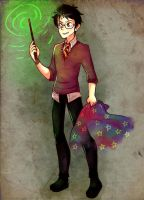 Harry Potter 17 by saeru-bleuts