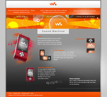 W910i Website by intelnode