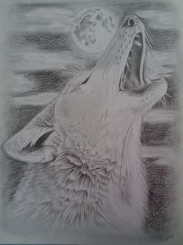 Howling Coyote by Stormcloud16