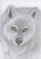 Wolf with green eyes by Takas15
