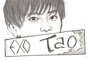 EXO Tao by TheNomNomApple