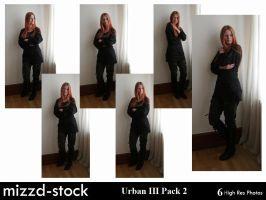 Urban Series III Pack 2 by mizzd-stock