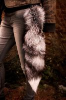 Silver Fox Tail For Sale by NaturePunk