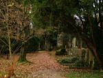 Cemetery Illenau by Caillean-Photography