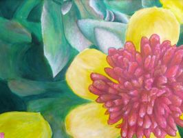 Portulaca Painting by kimberly-castello