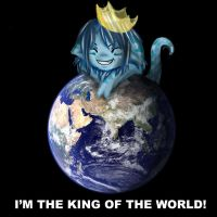I'm the king of the world by CrazyXanimal