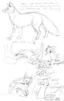 Tutorial Sketch: Fox 4 by Joava
