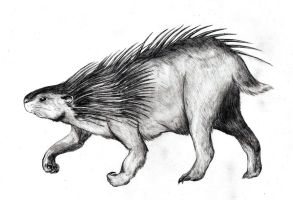 Giant wood porcupine by Amplion