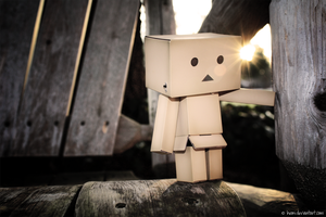 danboard loves to swing by heoni