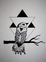 TRIANGLE - BIRD by Arctic-Designs