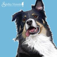 Cody Painting by ShelleyVPhoto