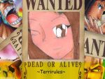 WANTED  TERRIRULZ by terrirules