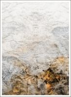 iPhoneography,  Under Ice by Gerald-Bostock