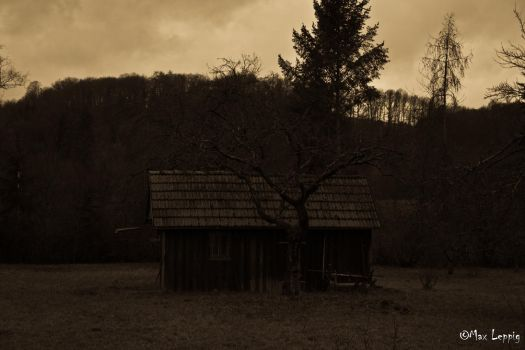 Old wooden House by MaxLeppig