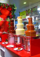 Chocolate Fountains by angela808