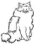 Floof (Uncolored) by Katey1801
