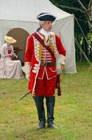 Cannock Chase Military History Weekend 2015 (21) by masimage