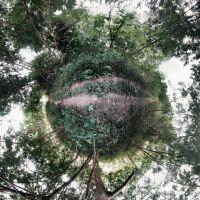 Our Own Little World by votra