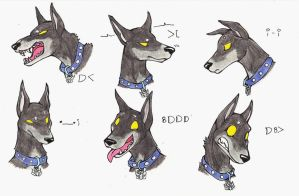 ravage doberman expressions by glowyrm