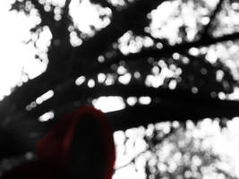 Red Riding Hood 16 by Luciferspet