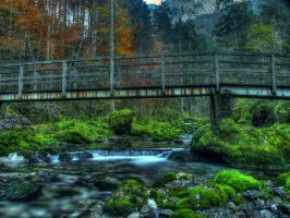 The Old Bridge In The Woods by Burtn