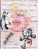 Project: Sonic -COVER- by PikaSonic