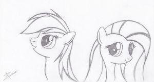 Fluttershy and Dashie by Xeirla