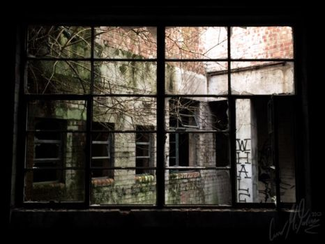 Window by G4M3HORD3R