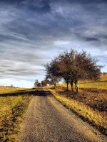 Autumn road 4 by FrantisekSpurny