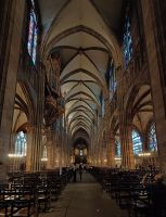 Strasbourg Cathedral I by Ziw