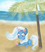 Beach Pony by ChanceyB