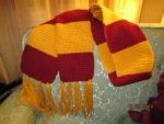 Harry Potter scarf - crochet by cideon