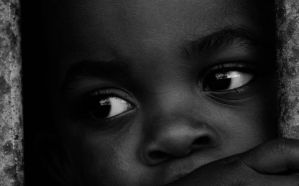 My Neighbour II by close-up-clive
