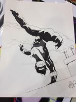Nightwing by RadPencils