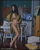Marilyn at home 2 by geeman99