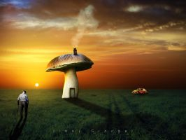 The Mushroom Mansion by djjimmygee