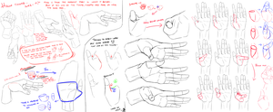 Hand Study 2- Thumb by Lijon