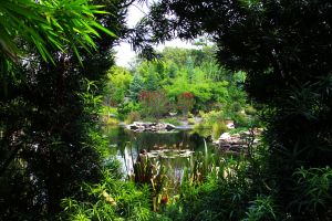 Porthole to Gardens by DGPhotographyjax