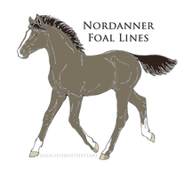 ID 9728 foal design by carouselstables