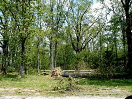 Storm Damage May 2009 09 by FlashBazbo56