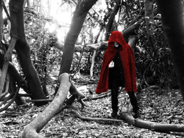Red Riding Hood 11 by Luciferspet