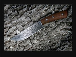 Knife-db1 by diadoBlago