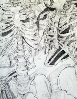 art portfolio-skeletons galore by mandk