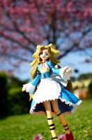 Nunnally in Wonderland by Bellechan