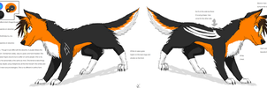 Ash ref sheet by WolfAsh