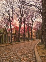 HDR Pere Lachaise Paris by jdesigns79