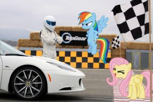 Rainbow Dash Vs. Stig by normanb88