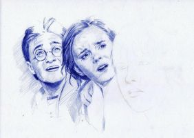 Harry Potter 7Biro WIP by AngelinaBenedetti
