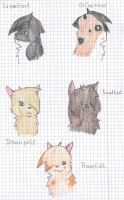 Some Shadowclan Cats by Feuerglut