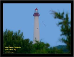 Cape May Lighthouse by Dracoart
